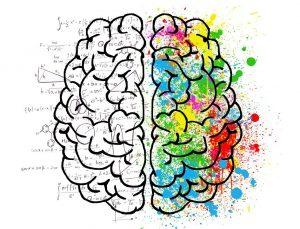 Cerveau et les ondes cérébrales